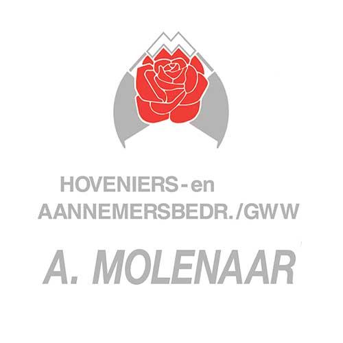 AT_web_Molenaar